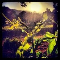 Photo taken at Sonoma Valley by Vino V. on 4/29/2013