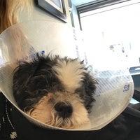 Photo taken at Animal Kind Veterinary Hospital by Regan D. on 8/1/2017
