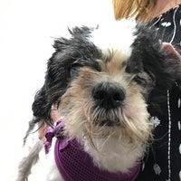 Photo taken at Animal Kind Veterinary Hospital by Regan D. on 7/8/2017