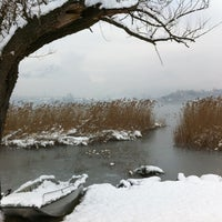 Photo taken at Lago di Annone by Beatrice P. on 2/12/2013