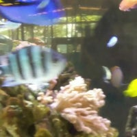 Photo taken at Qian Hu Fish Farm by Ursula S. on 4/16/2016