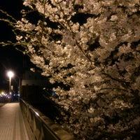 3/26/2013にMasayuki S.が新川名橋で撮った写真