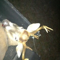 Photo taken at Claxton Poultry by Robbie T. on 11/8/2012