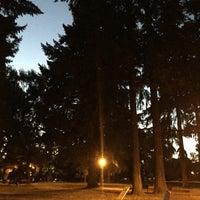 8/21/2016 tarihinde Michael T.ziyaretçi tarafından Oregon Park'de çekilen fotoğraf