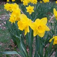 Photo taken at Arboretum in Durand Eastman Park by Stephen Y. on 4/24/2013
