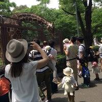 Photo taken at Giraffe by Yuiri N. on 5/31/2017