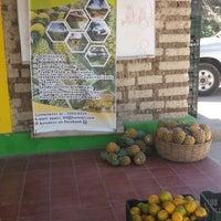 Photo taken at APPES Asociacion de Productores de Piña de El Salvador by Maudiel M. on 1/28/2014