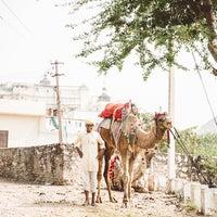 Photo taken at Devi Garh Udaipur by Sophia V. on 11/7/2016