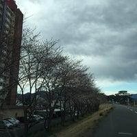 Photo taken at 安倍川右岸堤防静岡大橋付近 by chida3 on 3/24/2015