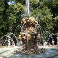 Foto scattata a Summer Garden da Александр Ф. il 6/30/2013
