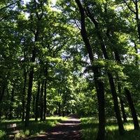 Photo taken at Kunratický les by Marketa P. on 5/19/2014