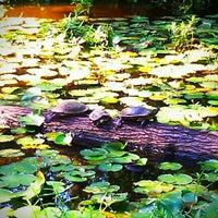 Photo taken at Houston Arboretum & Nature Center by Christi M. on 10/8/2012