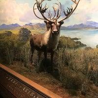 Снимок сделан в American Museum of Natural History Store пользователем Francisco P. 1/21/2018