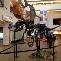 Снимок сделан в San Diego Natural History Museum пользователем Andrea F. 12/13/2012