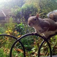 รูปภาพถ่ายที่ Green Park โดย Olessia O. เมื่อ 10/27/2012