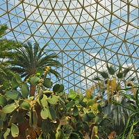 Photo taken at Mitchell Park Horticultural Conservatory (The Domes) by Valery S. on 7/6/2013