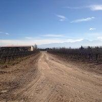 Photo taken at Bodega Tapiz by Mariana M. on 8/14/2014