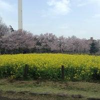 3/18/2013にJun M.が蘆花恒春園 (蘆花公園)で撮った写真