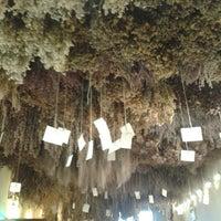 Photo taken at Aboca Museum by Noelia C. on 6/29/2013