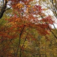 Photo taken at 秋保大滝植物園 by Heiward on 11/3/2014