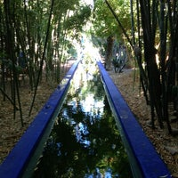 Photo taken at Jardin de Majorelle by Egor Z. on 1/1/2013