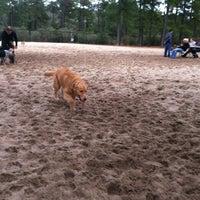 Photo taken at Ogden Park Dog Park by Haley L. on 12/15/2012