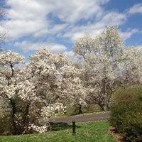 Снимок сделан в Morris Arboretum пользователем Linda L. 4/13/2013
