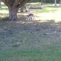 Photo taken at Ella & Friends (Deer Park) Dog Park by Amy C. on 9/18/2013