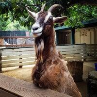 Photo taken at Orange County Zoo by Sarah H. on 5/18/2013