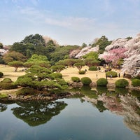 Photo taken at Shinjuku Gyoen by David B. on 3/28/2013