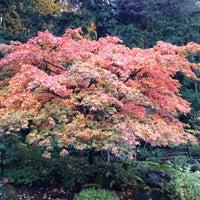 Das Foto wurde bei Washington Park von Jordan G. am 11/3/2012 aufgenommen