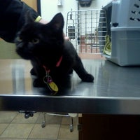 Photo taken at PetSmart by Liz W. on 2/26/2013