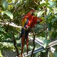8/29/2013にJYOTI S.がQueens Zoo Aviaryで撮った写真