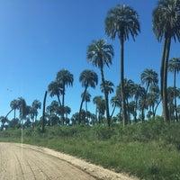 รูปภาพถ่ายที่ Parque Nacional El Palmar โดย Roberto B. เมื่อ 12/9/2014