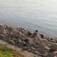 7/7/2014 tarihinde Katinka E.ziyaretçi tarafından Marina sétány'de çekilen fotoğraf