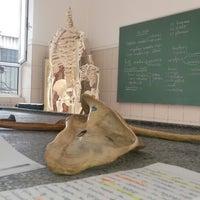 Photo taken at Институт за Анатомија / Institute for Anatomy by Melda E. on 9/18/2013