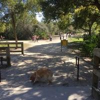 Enterprise Dog Park Tampa Fl