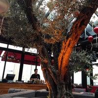 12/13/2013 tarihinde Sumeyye V.ziyaretçi tarafından Cafe Locale İstanbul'de çekilen fotoğraf