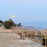 4/25/2013 tarihinde Ebru U.ziyaretçi tarafından Güre Sahili'de çekilen fotoğraf