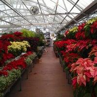 Photo taken at Nicks Garden Center & Farm Market by Matthew D. on 11/25/2012