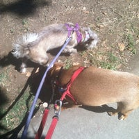 Photo taken at Poinsettia Park Dog Area by Adrienne S. on 9/23/2013