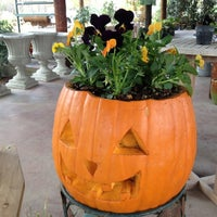 Photo taken at Southbranch Nursery Co. by Southbranch N. on 10/9/2012