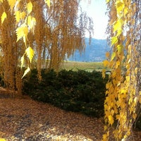 Photo taken at Blue Mountain Winery by Rachael T. on 10/18/2013