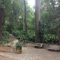 Photo taken at Bosque dos Jequitibás by Renato P. on 2/3/2013