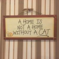 Снимок сделан в Fat Cat пользователем Nikolay T. 11/12/2015