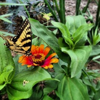 Photo taken at Tower Hill Botanic Garden by Chad L. on 7/12/2013