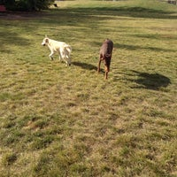 Photo taken at Thickwood Dog Park (Bark Park) by Lana S. on 9/22/2013