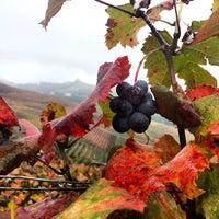 Foto scattata a Azienda Agricola Fratelli Aimasso da Fratelli A. il 10/31/2013