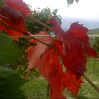 Foto scattata a Azienda Agricola Fratelli Aimasso da Fratelli A. il 10/5/2012