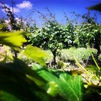 Foto scattata a Azienda Agricola Fratelli Aimasso da Fratelli A. il 6/16/2013